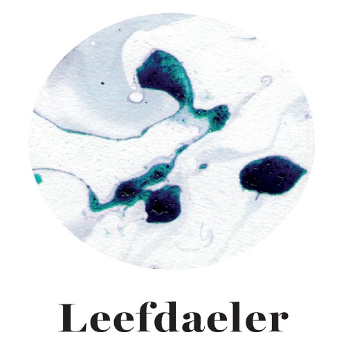 Leefdaeler