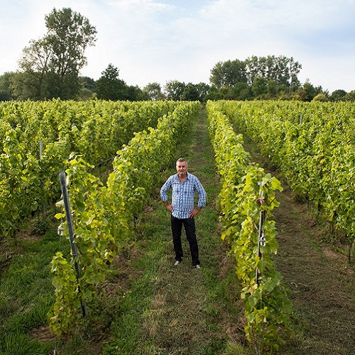 Wijndomein Pres de Gand